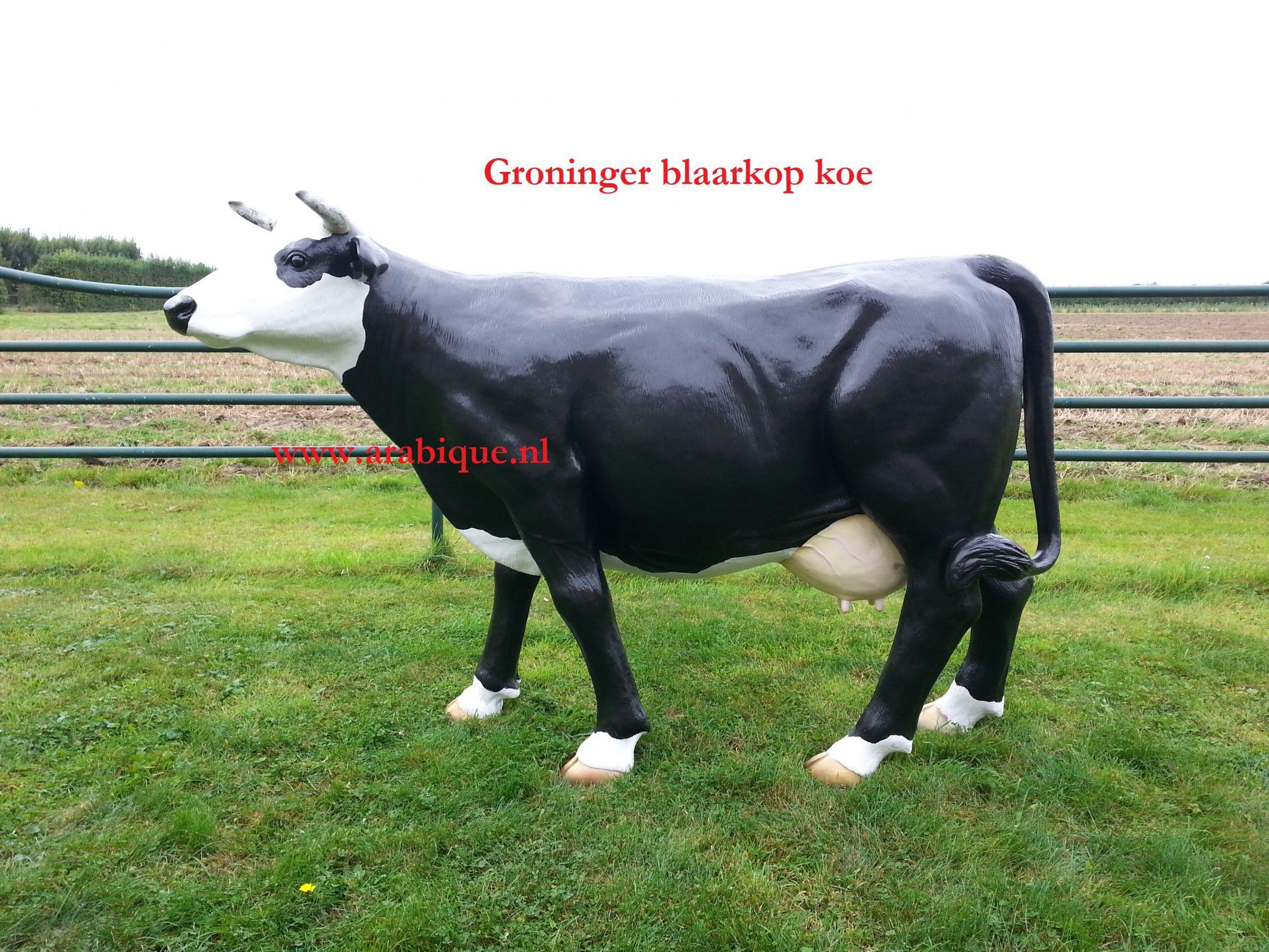 Polyester koe te koop